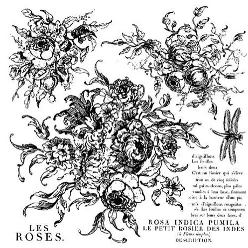 Rose Toille Stamp