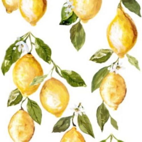 Lemon Drop Transfer (Tube)
