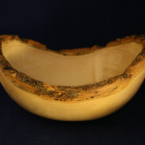 Box Elder Bowl with Natural Edge - SOLD