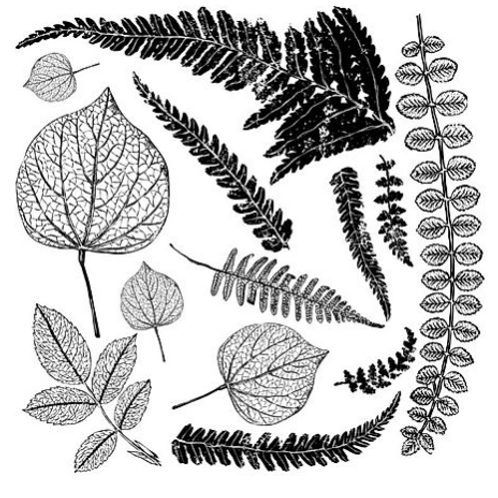 Fronds Stamp