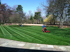 One Free Month Of Lawn Mowing Services From All Terra Landscape Of Lansing MI