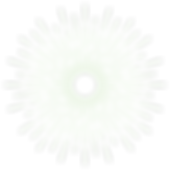 Ridge_Logo.png
