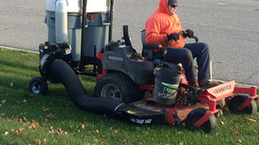 Importance of a Fall Clean Up