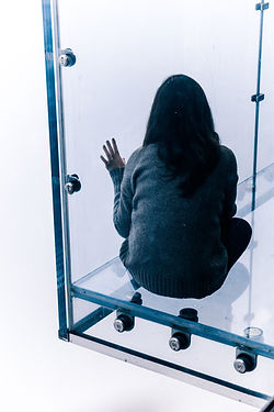 woman in glass box hybrid.jpg