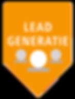online leadgeneration strategy