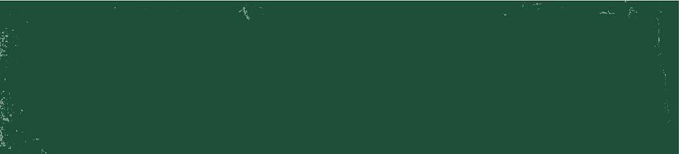 רקע ירוק about us-01.jpg