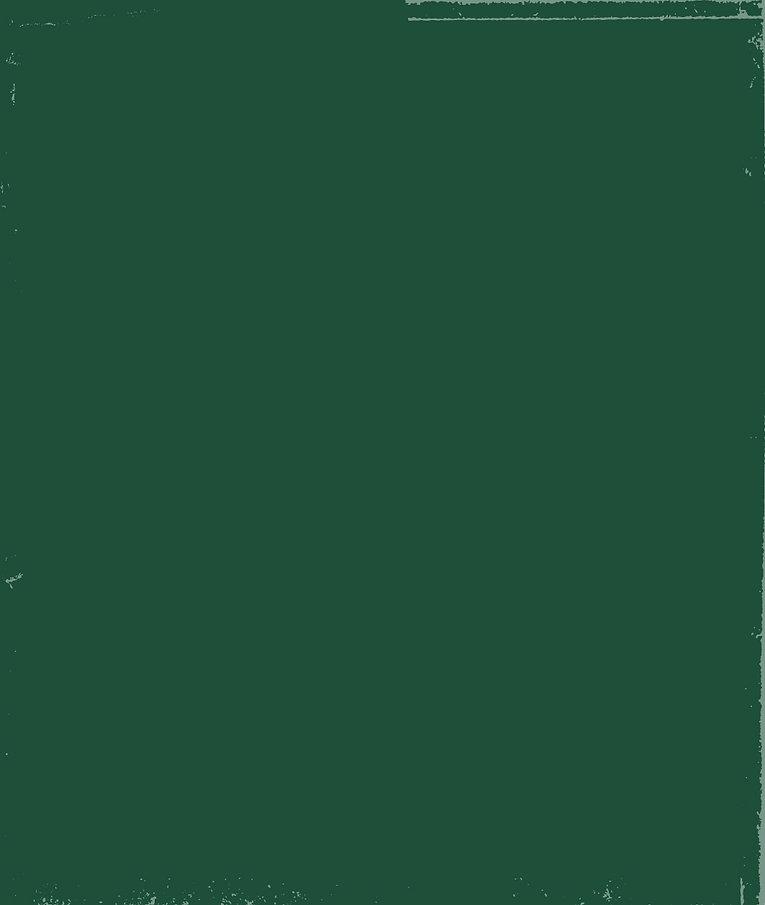 אבוקדו_רקע ירוק הסבר כללי-01.jpg