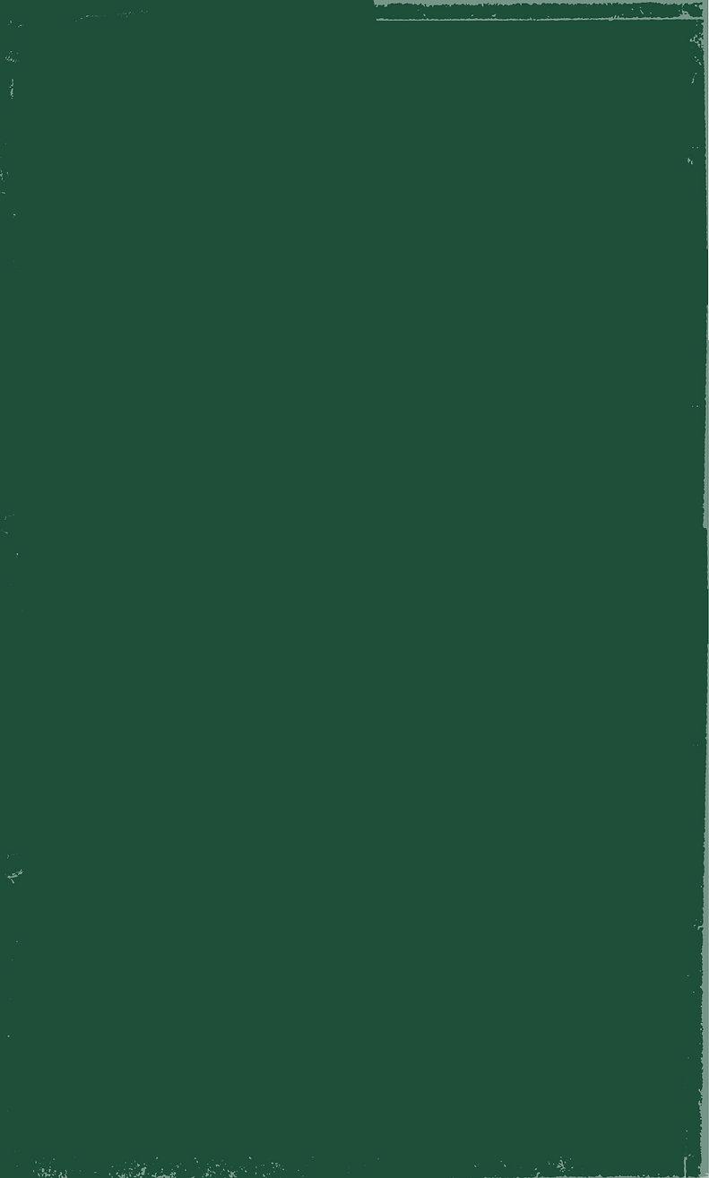 רקע ירוק הסבר כללי_about us-01.jpg