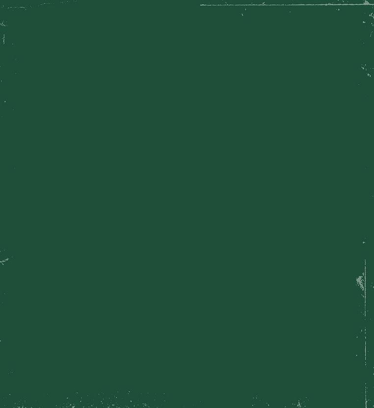רימון_רקע ירוק הסבר כללי-01.jpg