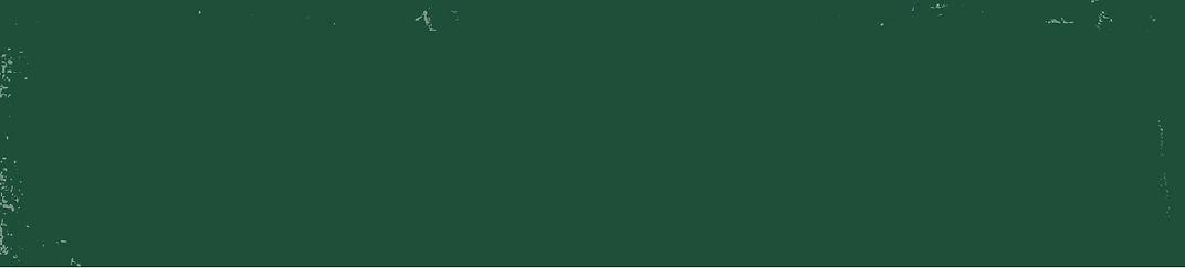 רקע ירוק צור קשר-03.jpg