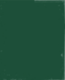 רקע ירוק-26.png