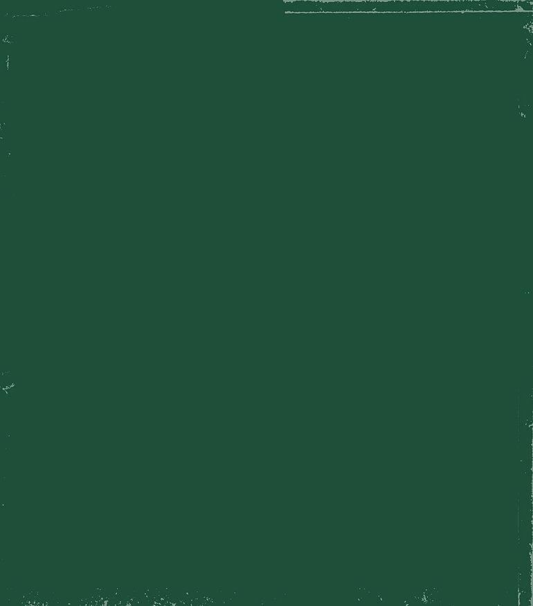 מנגו_רקע ירוק הסבר כללי-01.jpg