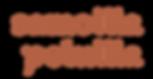 samoillapoluilla_logo_transparent_ensisi
