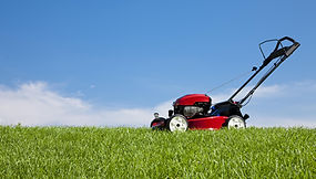 Mowing Trimming