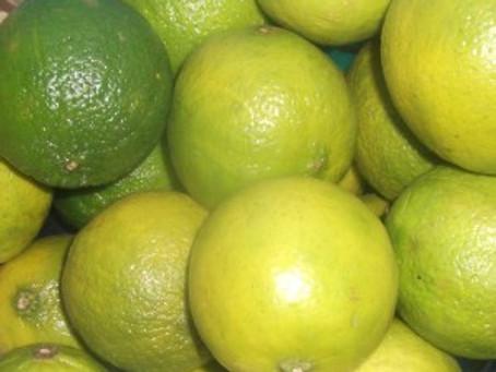 A Whole Lotta Limes…..