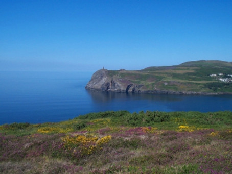 O the heather and gorse on old Bradda's broad back…