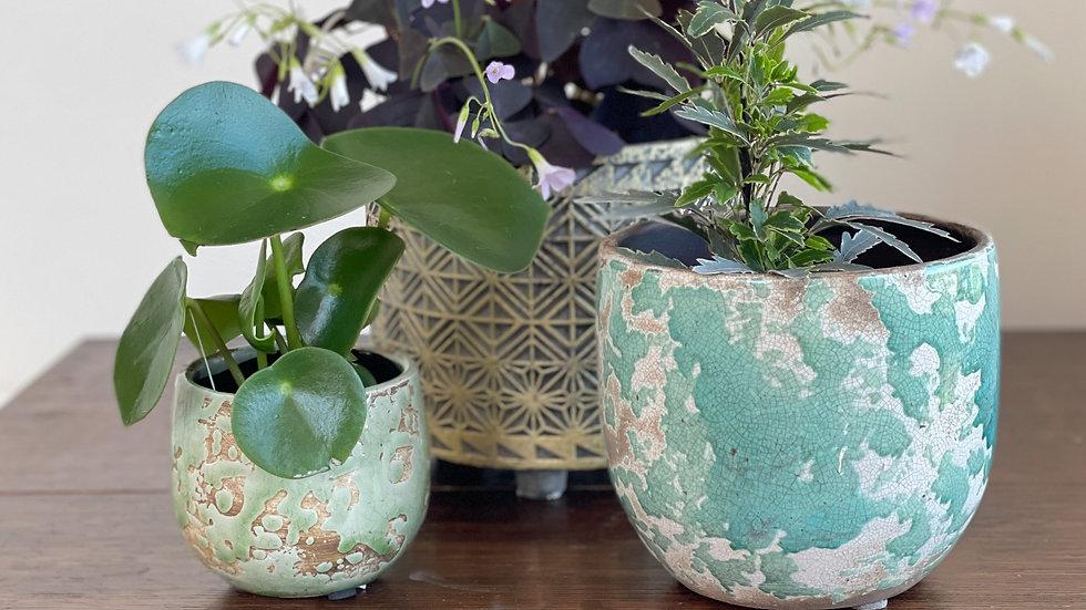 Crackle Ceramic Pot