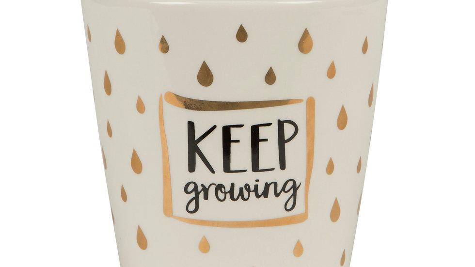 'Keep Growing' Planter