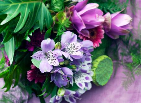 Flower of the Month – February – Alstroemeria