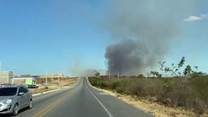 Incêndio é registrado às margens da BR-232, em Pesqueira
