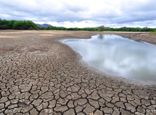 Sertão pernambucano entra em estado de alerta por baixa umidade do ar