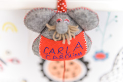 CarlaCarolina-26.jpg