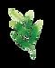 Leaf 4.png