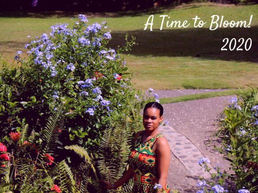 New Year 2020 - A Time to Bloom (Life Lessons)