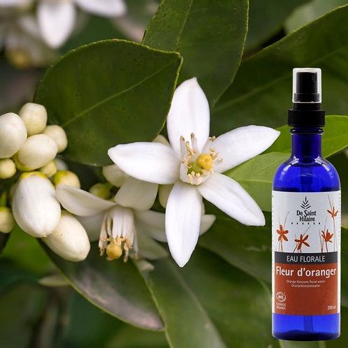 Fleur d'oranger - Distillerie St Hilaire