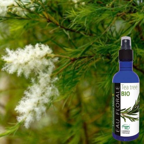 Eau florale Tea Tree bio