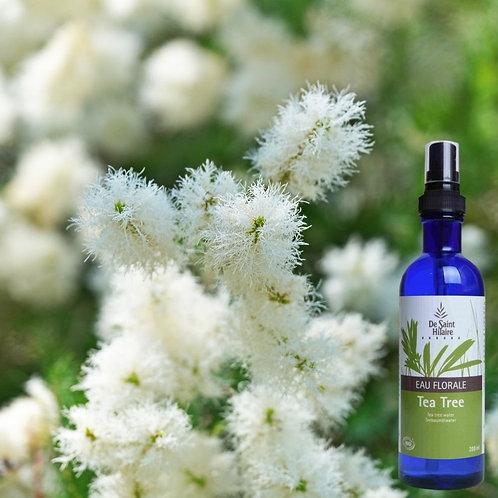 Eau florale Tea tree - Distillerie st Hilaire