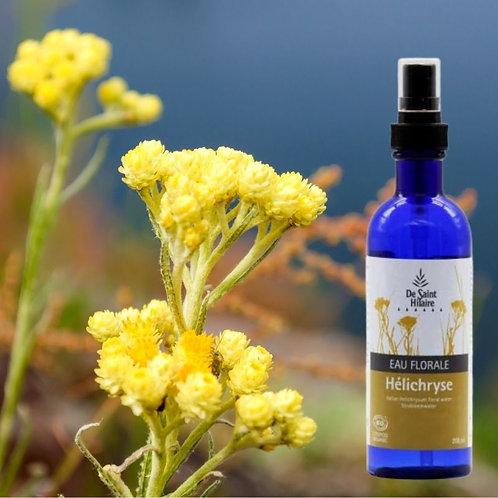 Eau florale Helichryse bio - distillerie st Hilaire