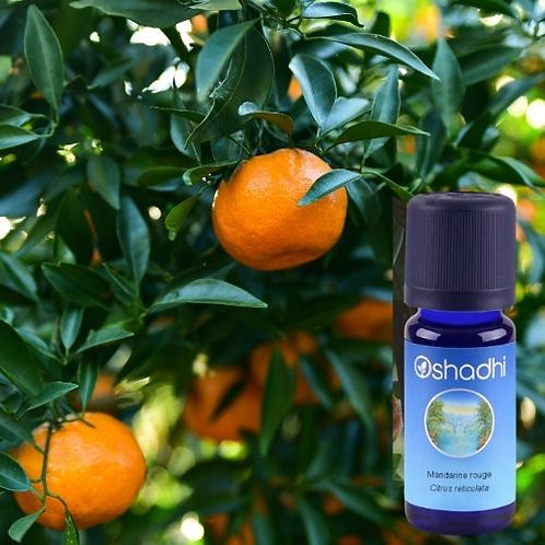 Mandarine rouge bio - Oshadhi