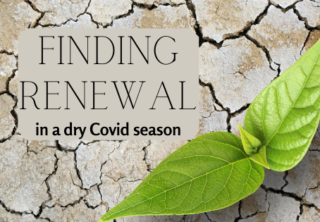 Finding Renewal in a Dry Covid Season