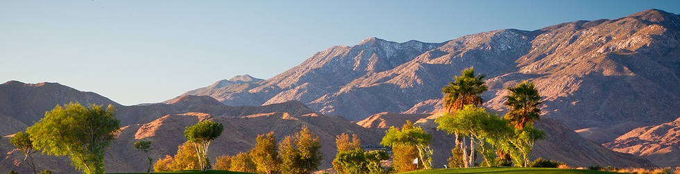 Coachella Valley Desert Pet Sitter