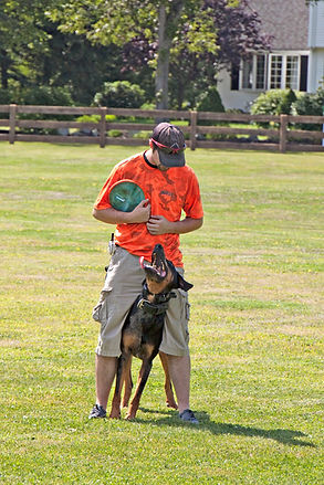 Dog Training Albuquerque