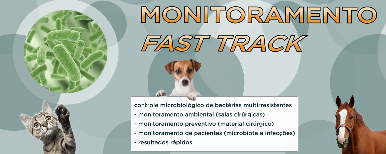fast_track figura2.jpg