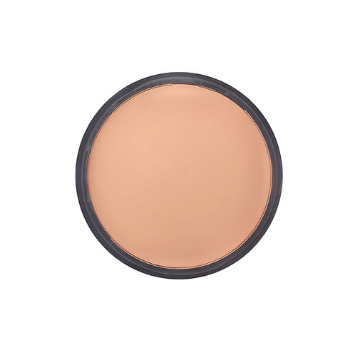 Natural Beige 2 - Performance Ultimate Coverage Foundation