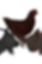 les serres de moras