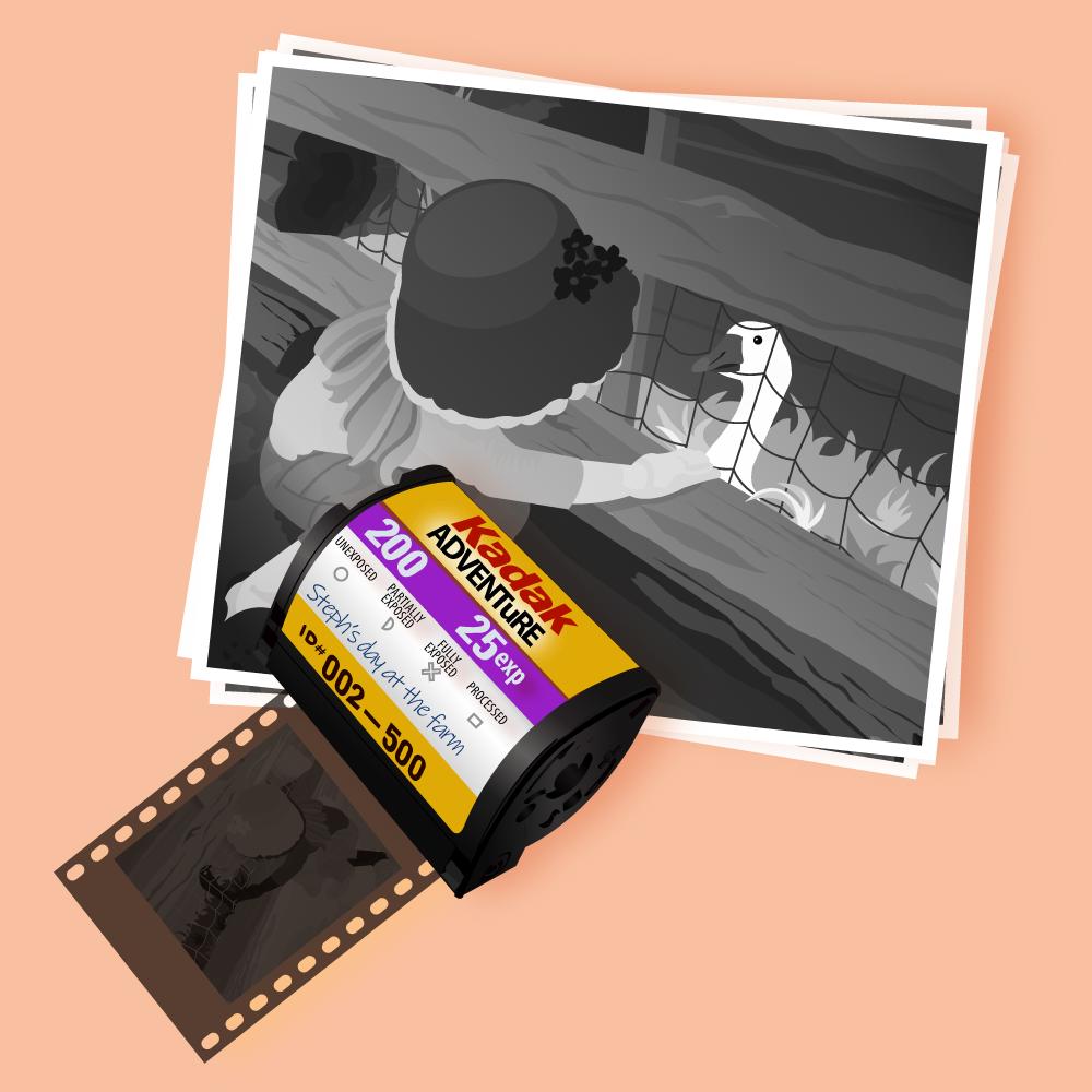 Original digital illustration of film & Ava at the farm