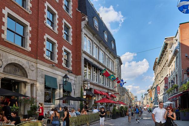 (Suspenso) Interessado em estudar no Canadá? Québec na Cabeça recruta estudantes no Brasil