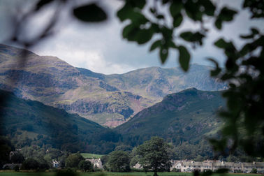 Old Man of Coniston Through Trees