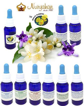 Terapia Floral de Saint Germain