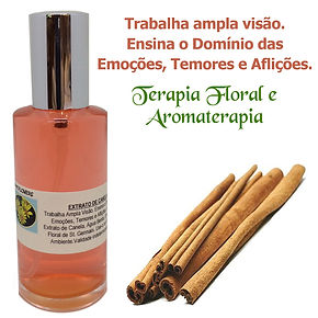 Spray Aromaterapia Canela