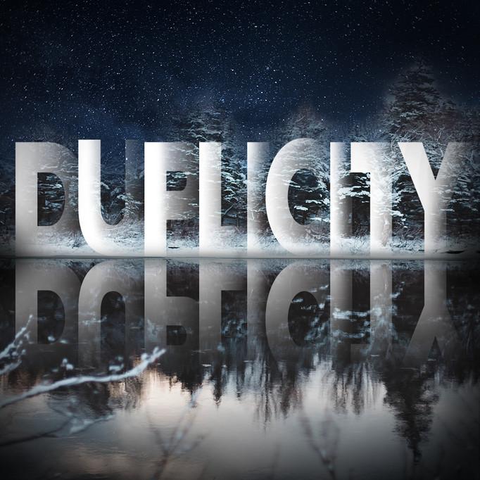 Duplicity Comp 2
