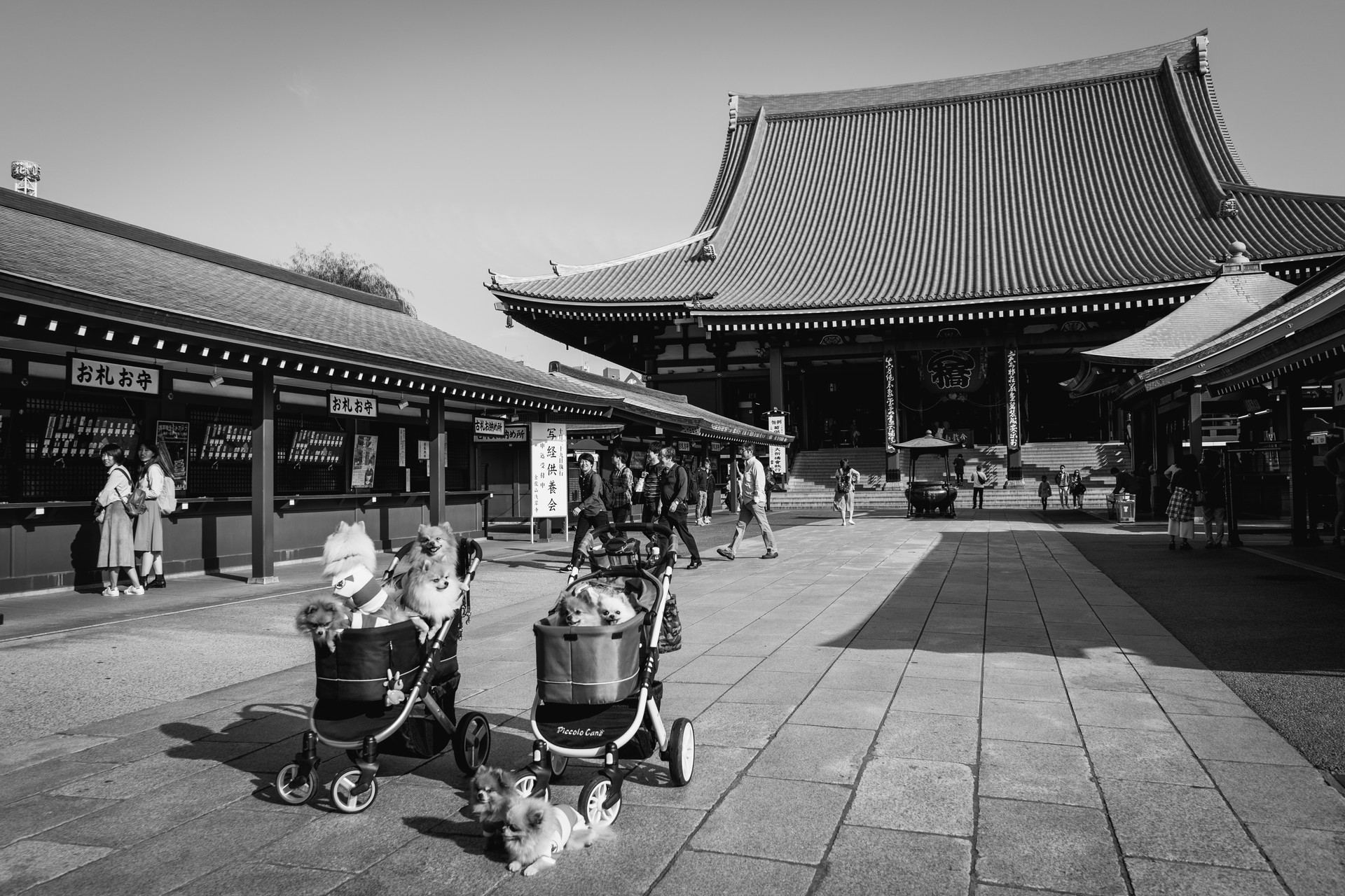 tokyo-2017_37835372085_o.jpg
