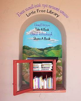 Barona's Little Free Library