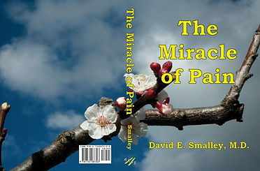 The Miracle of Pain book cover, with apricot tree blossoms and a blue sky and fluffy clouds background