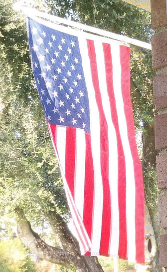 US Flag vertically displayed with olive tree background