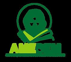 Logo-1--Amebem (2).png